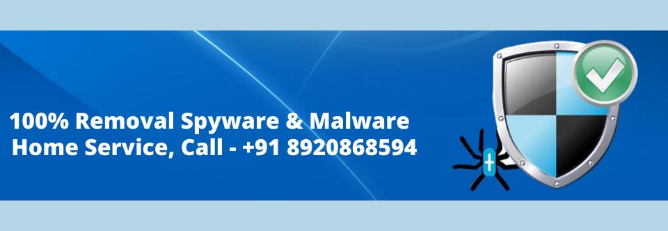 Computer Virus Removal Service in Delhi